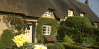 Thatched Holiday Cottage